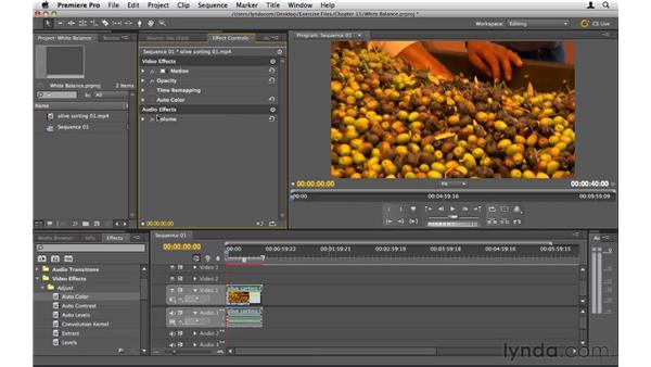 Adjusting white balance: Premiere Pro CS5 Essential Training
