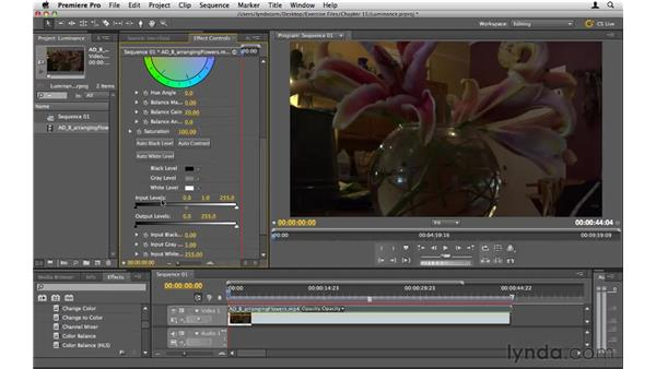 Adjusting luminance: Premiere Pro CS5 Essential Training