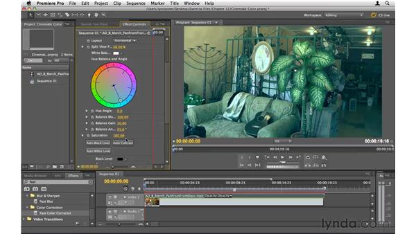 Creating cinematic color: Premiere Pro CS5 Essential Training