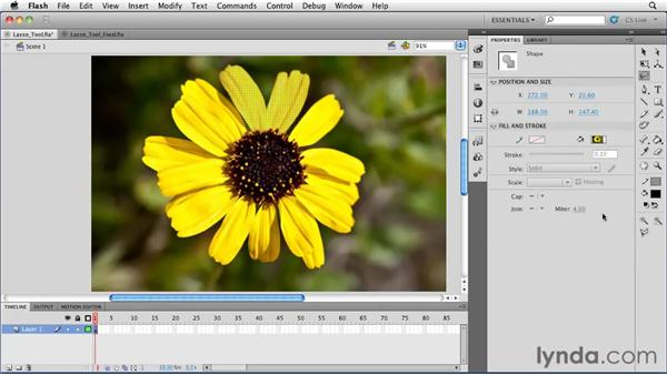 Using the Lasso tool with bitmap images: Flash Professional CS5 Essential Training