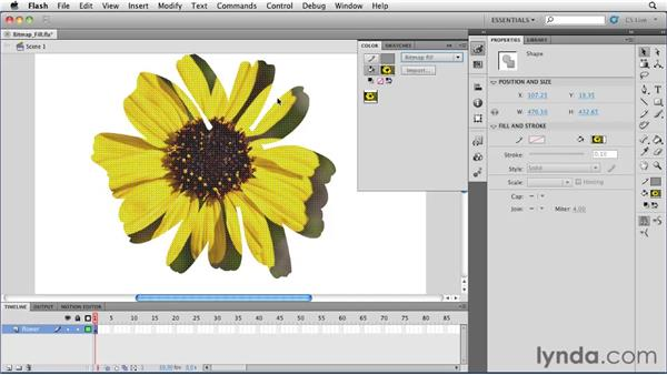 Using bitmap fills : Flash Professional CS5 Essential Training