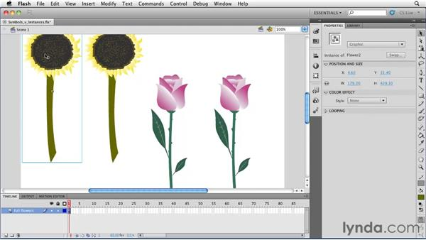 Differentiating symbols from instances: Flash Professional CS5 Essential Training