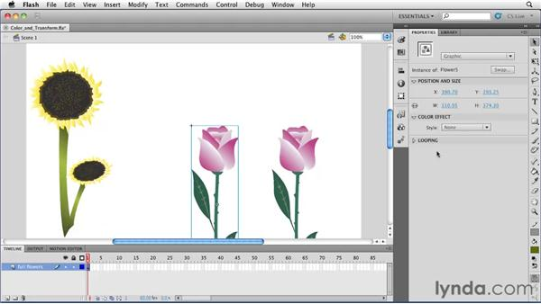 Applying color changes and transformations to instances of symbols: Flash Professional CS5 Essential Training