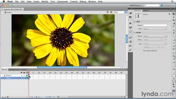 Applying blend modes to objects: Flash Professional CS5 Essential Training