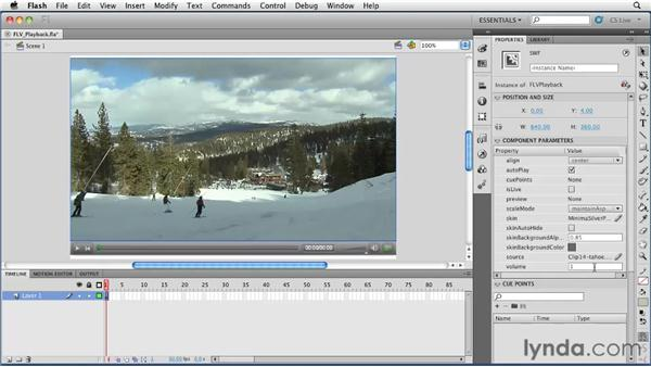 Using the FLV playback component: Flash Professional CS5 Essential Training