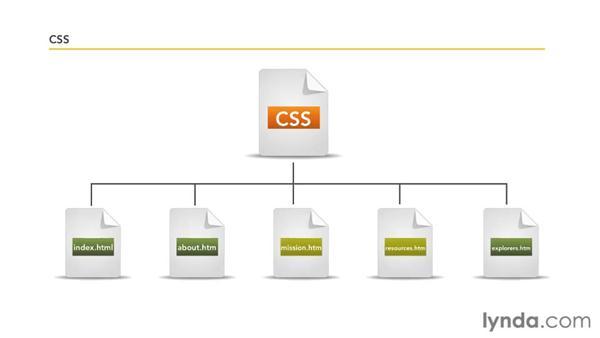 Understanding style sheets: Dreamweaver CS5 Essential Training
