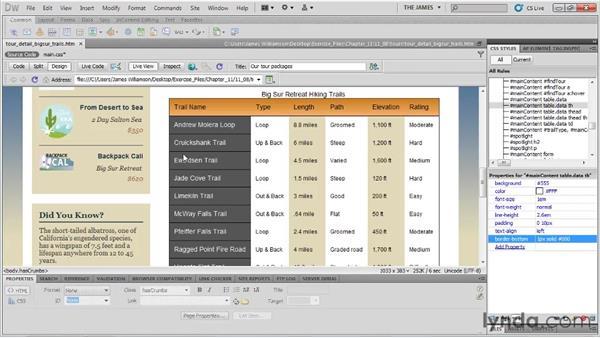 Creating custom table borders: Dreamweaver CS5 Essential Training