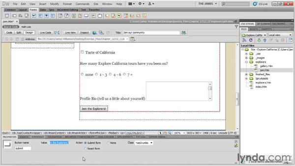 Inserting submit buttons: Dreamweaver CS5 Essential Training