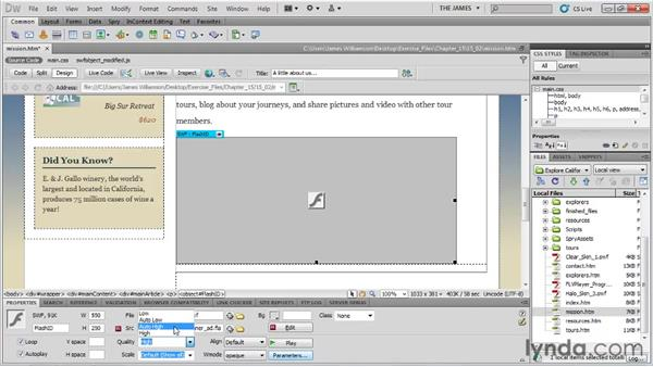 Setting properties for Flash: Dreamweaver CS5 Essential Training