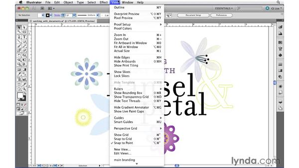 Creating custom views: Illustrator CS5 Essential Training