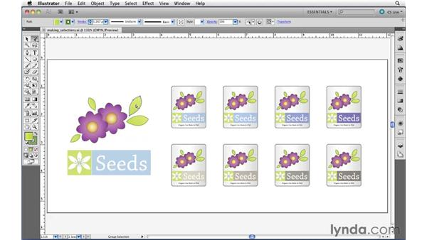 Using the basic selection tools: Illustrator CS5 Essential Training