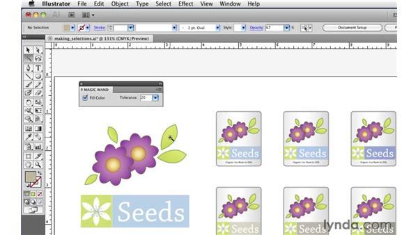Using the Magic Wand tool: Illustrator CS5 Essential Training
