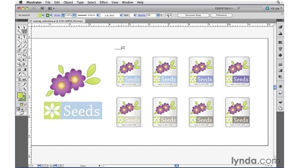 Using the Lasso tool: Illustrator CS5 Essential Training