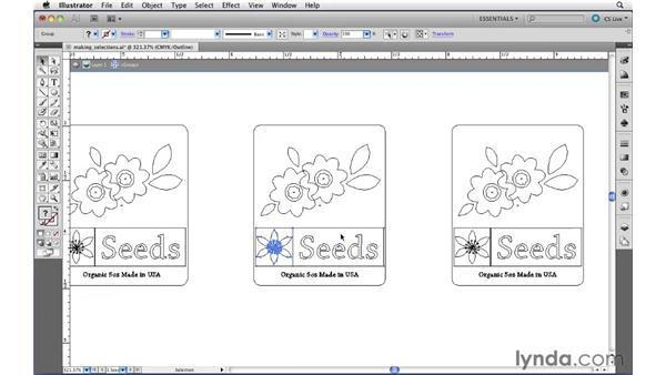 Selecting artwork beneath other objects: Illustrator CS5 Essential Training