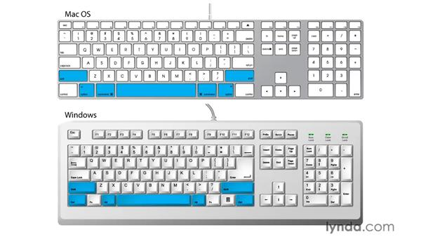 The importance of modifier keys: Illustrator CS5 Essential Training