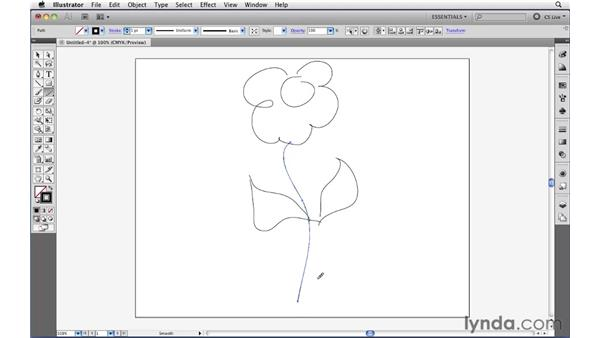 Smoothing and erasing paths: Illustrator CS5 Essential Training