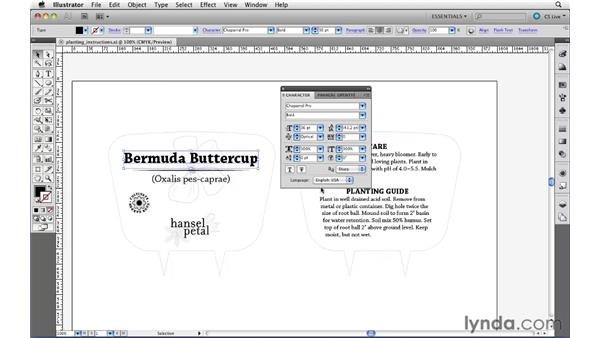 Applying basic character settings: Illustrator CS5 Essential Training
