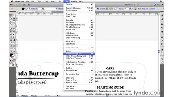 Creating text threads: Illustrator CS5 Essential Training
