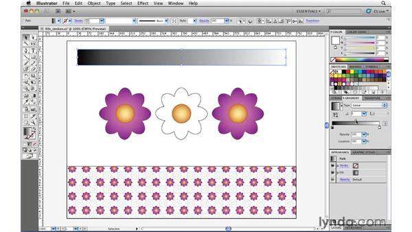 : Illustrator CS5 Essential Training
