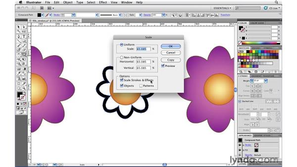 Turning strokes into filled paths: Illustrator CS5 Essential Training