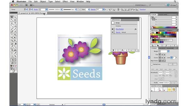 Adding attributes to groups: Illustrator CS5 Essential Training