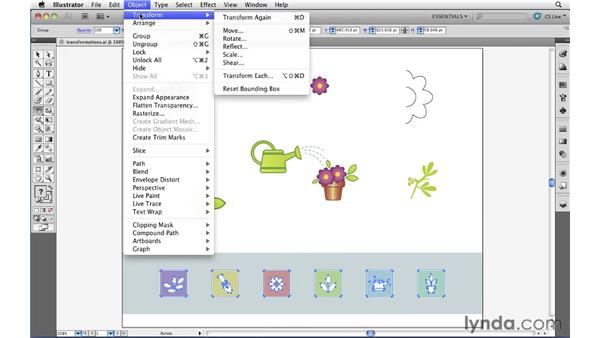 : Illustrator CS5 Essential Training