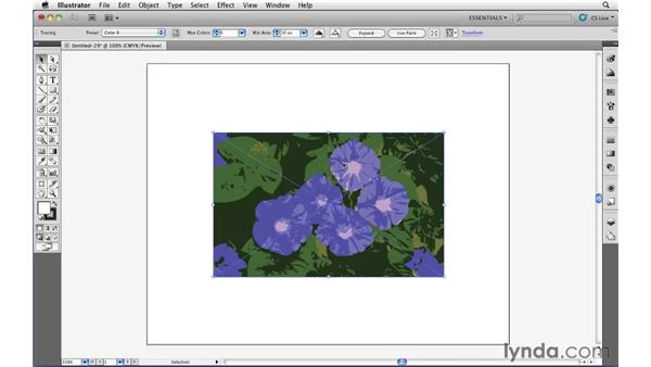 Converting pixels to paths with Live Trace: Illustrator CS5 Essential Training