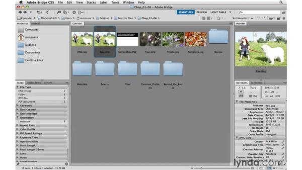 Raw vs. JPEG files: Photoshop CS5 Essential Training