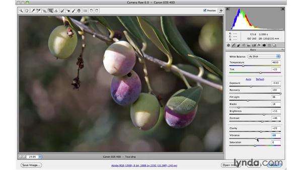 A tour of the Camera Raw user interface: Photoshop CS5 Essential Training