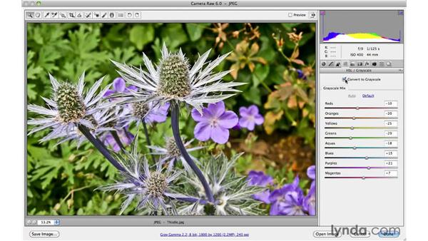 Previewing before and after adjustments: Photoshop CS5 Essential Training