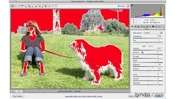 Toggling onscreen Shadow/Highlight clipping warnings: Photoshop CS5 Essential Training