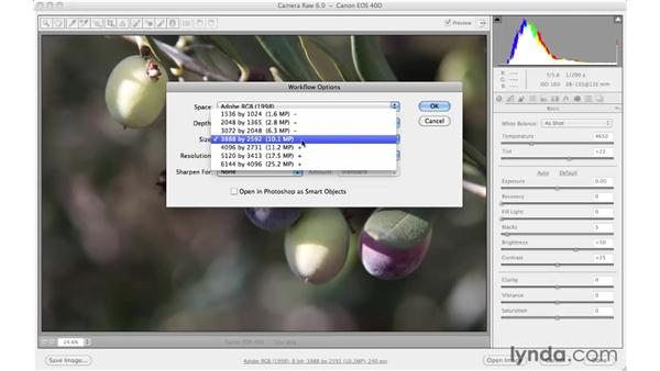 Choosing output settings: Photoshop CS5 Essential Training
