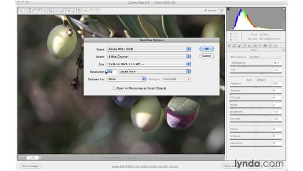 Saving a copy without going to Photoshop: Photoshop CS5 Essential Training