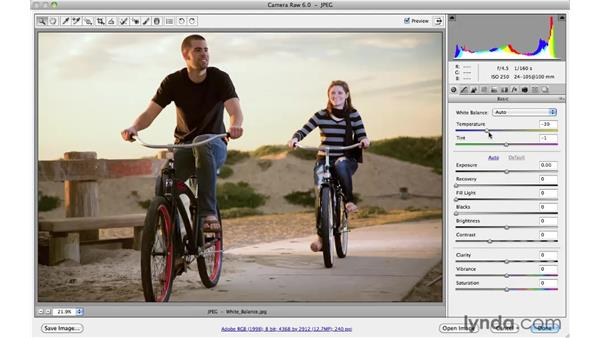 Fixing color casts with the White Balance tool: Photoshop CS5 Essential Training