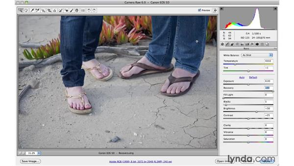 Fixing blown-out highlights with Recovery: Photoshop CS5 Essential Training
