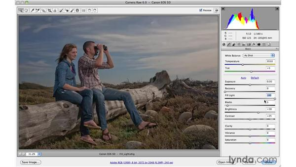 Revealing hidden shadow detail with Fill Light: Photoshop CS5 Essential Training