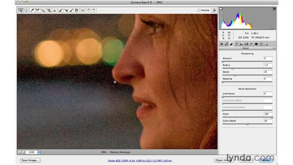 Reducing distracting color noise with Noise Reduction: Photoshop CS5 Essential Training