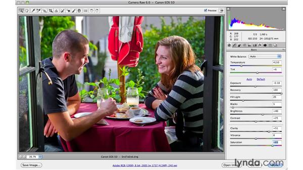 End to end: Taking a so-so photo and making it great: Photoshop CS5 Essential Training