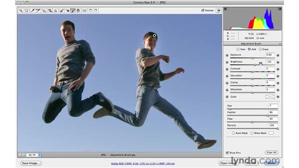 Making local adjustments with the Adjustments Brush: Photoshop CS5 Essential Training