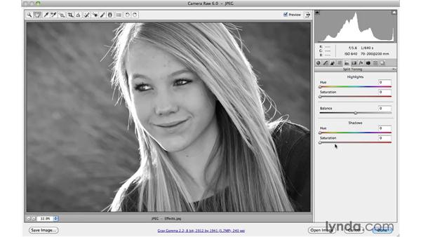 Easy sepia and split tone effects: Photoshop CS5 Essential Training