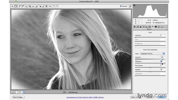 Adding vignettes and border effects: Photoshop CS5 Essential Training