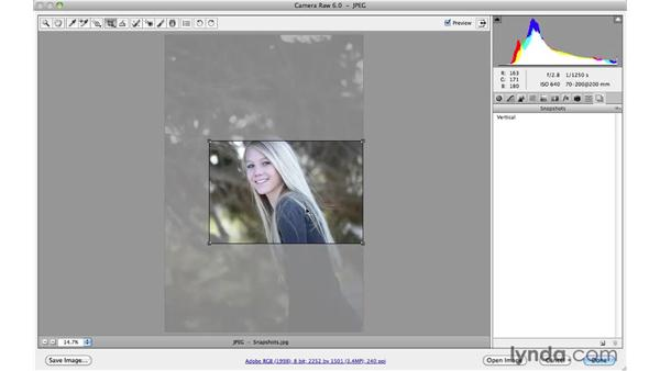 Saving variations within a single file with Snapshots: Photoshop CS5 Essential Training