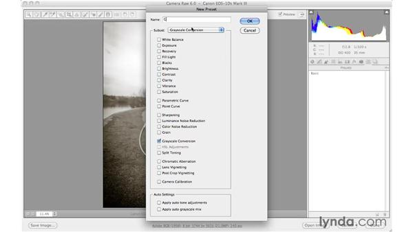 Saving and using a library of Camera Raw presets: Photoshop CS5 Essential Training