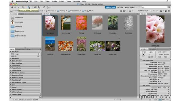 Opening files from Adobe Bridge: Photoshop CS5 Essential Training