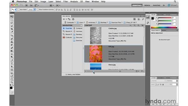 Customizing the Mini Bridge panel: Photoshop CS5 Essential Training