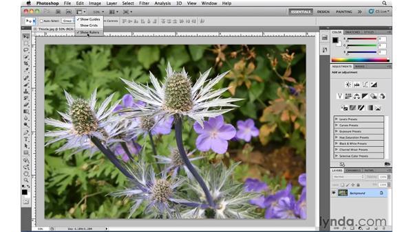 The Application bar: Photoshop CS5 Essential Training