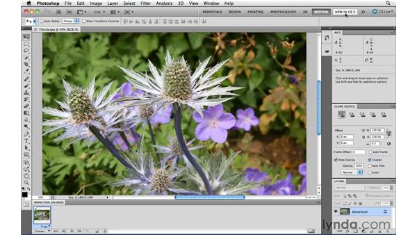 Switching and saving workspaces: Photoshop CS5 Essential Training