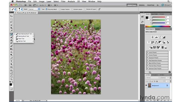 Switching tools using the keyboard: Photoshop CS5 Essential Training