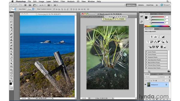How to stop Photoshop from tabbing documents: Photoshop CS5 Essential Training