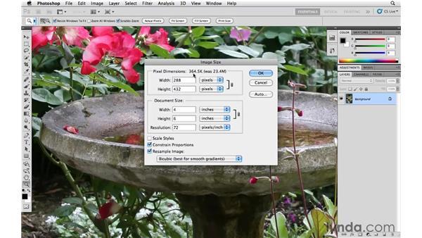 Resize vs. Resample: Photoshop CS5 Essential Training